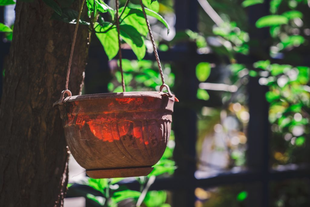 brown wooden round pot with green leaves